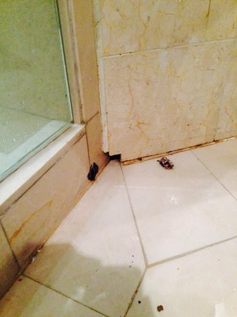 Avillion Legacy Melaka: Leakage from the bath tub marble