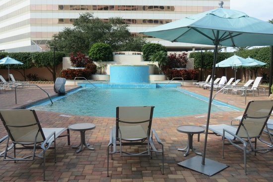 pool picture of embassy suites tampa airport westshore. Black Bedroom Furniture Sets. Home Design Ideas