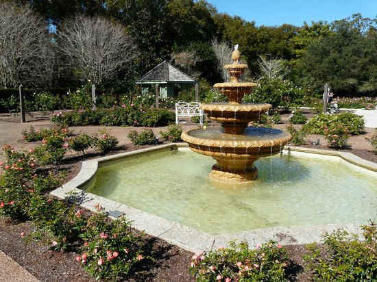 Foto de harry p leu gardens orlando fountain tripadvisor for Jardines de harry p leu