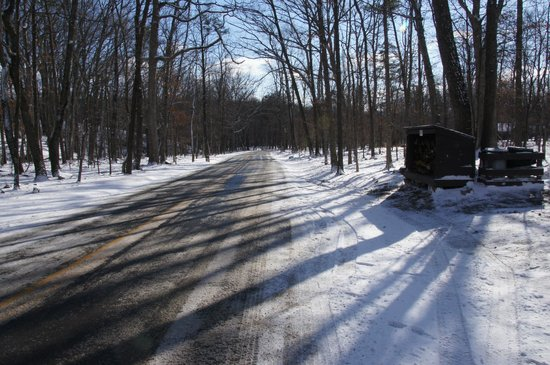 Cacapon Resort State Park: Looking down the drive, in front of cabin 13, towards park gate (cabin was to my right)