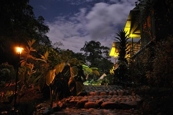 PlayaSelva Tropical Rain Forest & Lodge