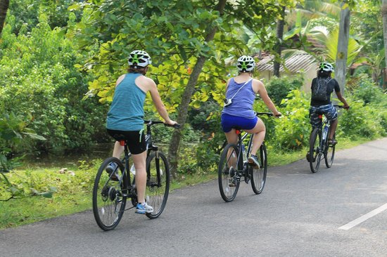 Art of Bicycle Trips - Day Tours