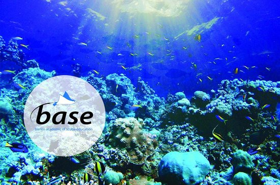 BASE Diving Centre Ltd