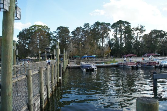 The Campsites at Disney's Fort Wilderness Resort: Great campground