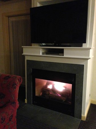 Marriott's Fairway Villas: Fireplace... I was in heaven on that cold winter night!
