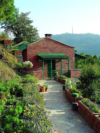 Photo of Baikunth Resort Kasauli