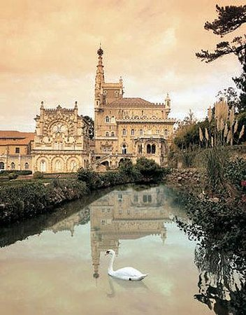 Photo of Bussaco Palace Hotel Luso