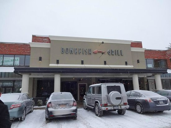 The bonefish picture of bonefish grill albany tripadvisor for Bone fish grill locations