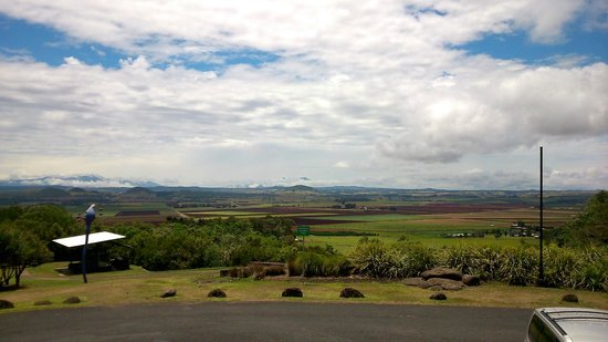 Hallorans Hill Lookout