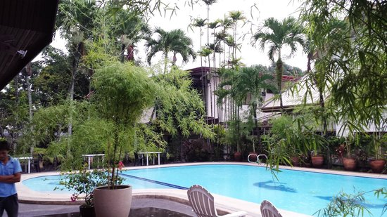 The pool picture of domicilio lorenzo apartelle davao - Apartelle in davao city with swimming pool ...