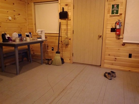 Great Allegany State Park Cabins With Bathrooms Photos General