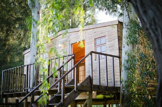 Vindoux Tree House Guest Farm & Spa