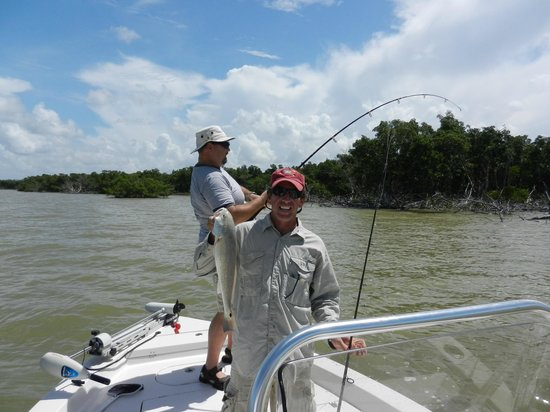That 39 s a fish picture of everglades fishing adventures for Fishing in the everglades