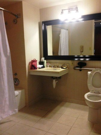 Sheraton Gateway Los Angeles: Bathroom Area - Sink is too small