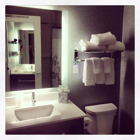 Courtyard by Marriott Omaha Downtown: Bathroom