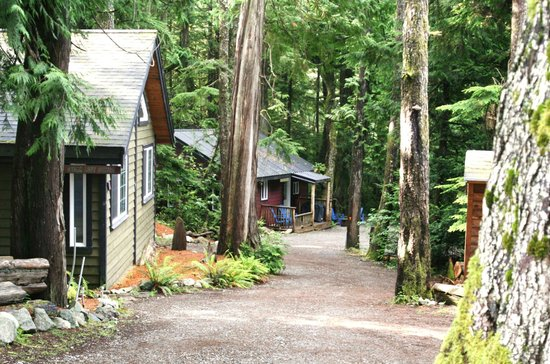 Photo of Surfs Inn Rainforest Cottages And Guesthouse Ucluelet