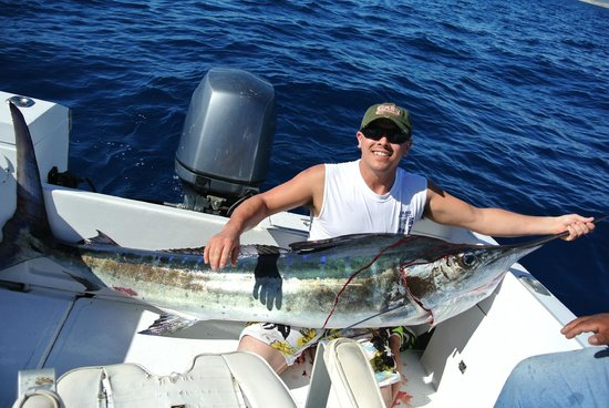 100 ft long picture of cabo fishing charters cabo san for Wildwood fishing charters