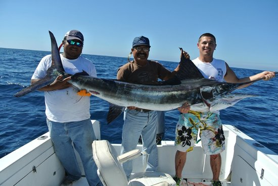 100 Ft Long Picture Of Cabo Fishing Charters Cabo San