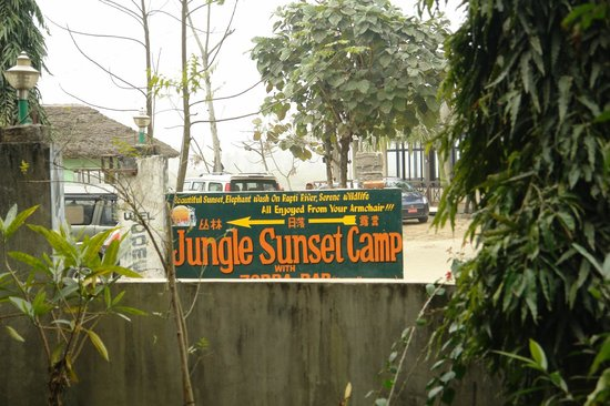 Jungle Sunset Camp