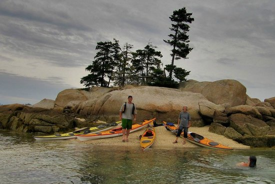 Driftwood Kayak - Day Tours