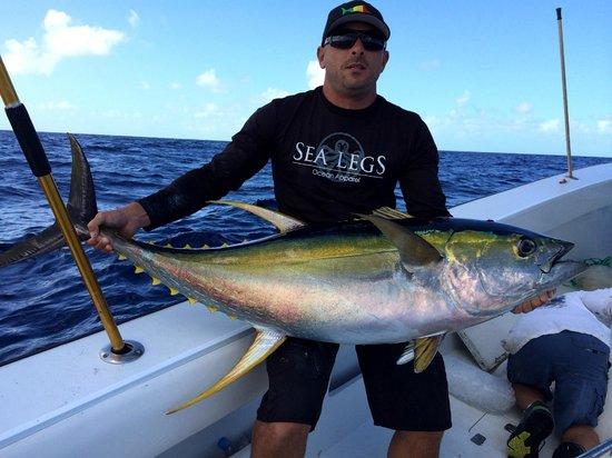 Yellowfin tuna picture of double header sportfishing st for St thomas fishing