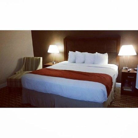 Howard Johnson Los Angeles/Near Convention Center: Very comfortable bed