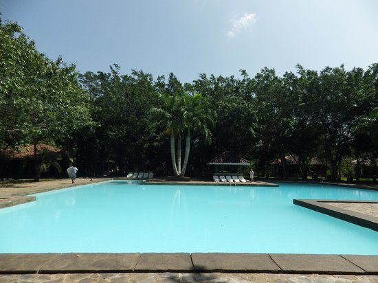 piscine en eau trouble picture of palm garden village hotel anuradhapura tripadvisor. Black Bedroom Furniture Sets. Home Design Ideas