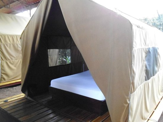 super tente de luxe picture of arenal backpackers resort. Black Bedroom Furniture Sets. Home Design Ideas