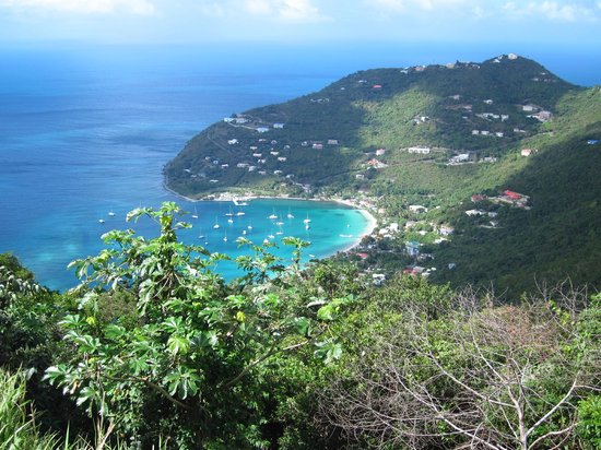Cane Garden Bay From Stouts Lookout Bar Picture Of