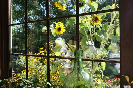 Thyme in the Country: The view from the dining room