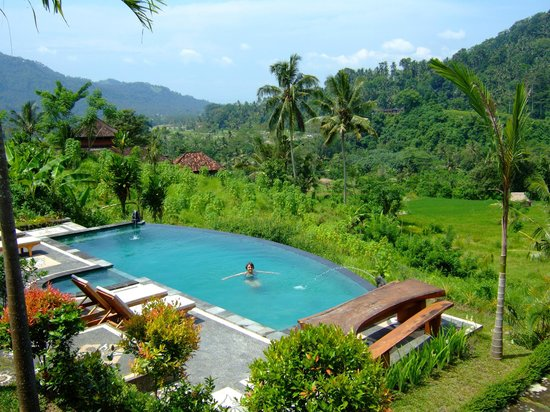 View Of The Pool And Fields From Bungalow 1