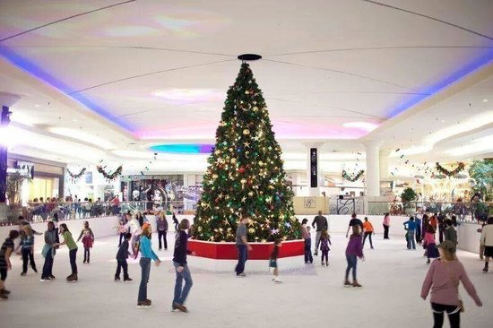 Eastdale Mall Ice Palace