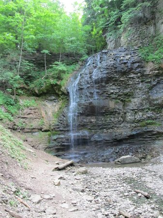 Tiffany Falls Conservation Area