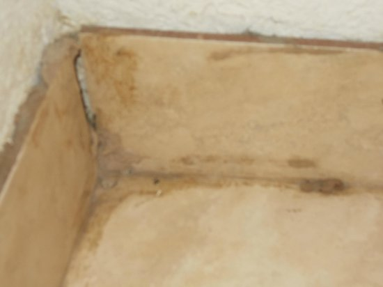 Knights Inn Phoenix North: trying to hide BLACK MOLD  with caulking