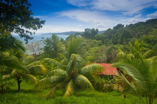Photo of Hotel Rancho Corcovado Drake Bay