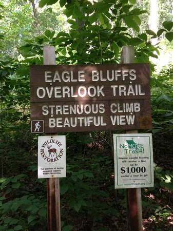 Eagle Bluffs Conservation Area