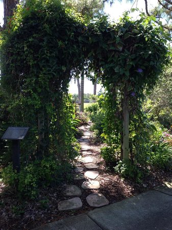 The best seat in the garden picture of mounts botanical for Jardin west palm