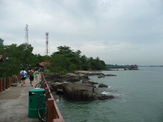 pulau ubin field trip report Be transported back in time to 1960s singapore as you embark on a trip to pulau ubin shaped like a boomerang, this 1,020-hectare island is home to singapore's last village or kampongs, as well as the chek jawa wetlands, one of singapore's richest ecosystems.