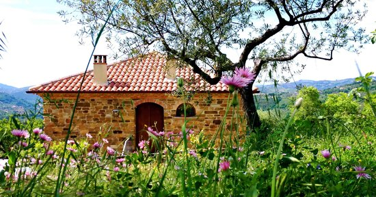 B&B Country House Villa Nigro nel Cilento