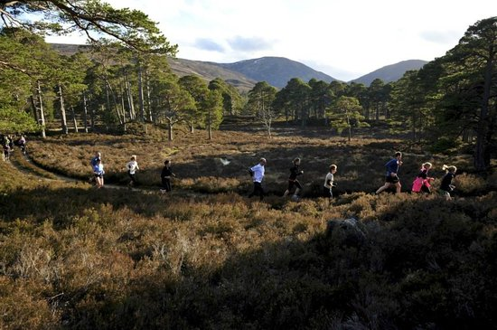Running the Highlands - Private Day Tours