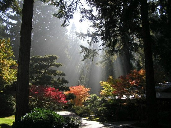 Flat Garden in the Portland Japanese Garden Picture of