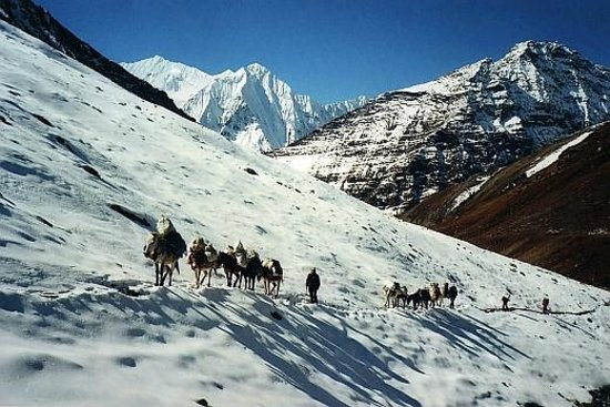 tourism in the himalaya Sustainable tourism in the himalayas there's a boosting awareness of the effects mass tourism has on today's environment ergo, the mere concept of sustainable tourism is starting to become increasingly more known.