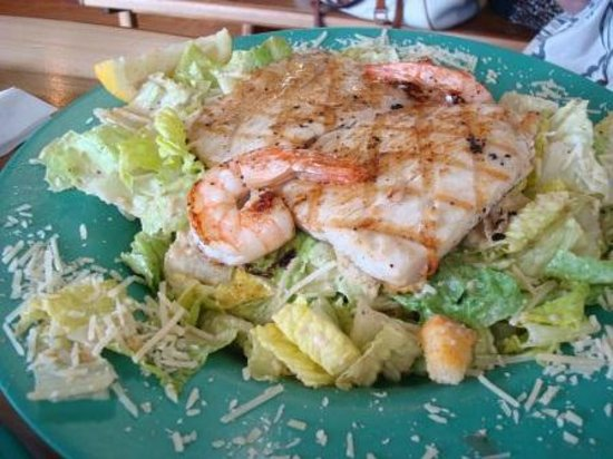 Seafood salad coconut 39 s fish cafe 1279 s kihei rd for Coconut s fish cafe