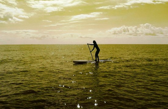 Paddle Surf New Jersey