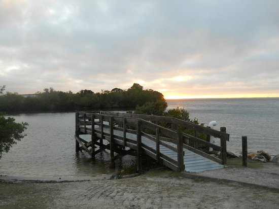 Dog park picture of anclote gulf park holiday tripadvisor for Gulf shores pier fishing forum