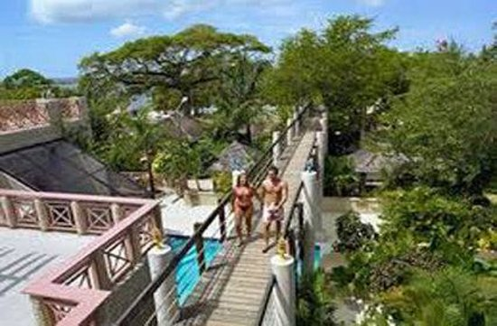 Property picture of hedonism ii negril tripadvisor for 11 westmoreland terrace
