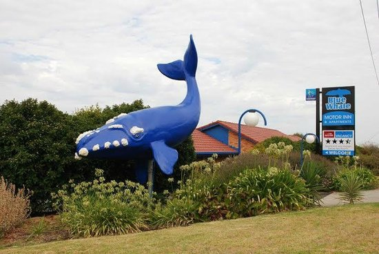 Photo of Blue Whale Motor Inn & Apartments Warrnambool