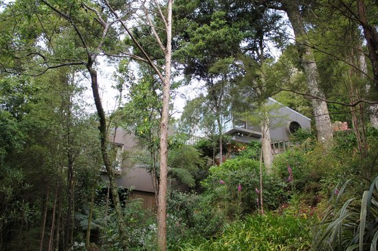 Photo of Bush Walk Bed & Breakfast Homestay Nelson
