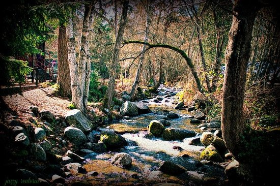 Beautiful place to always take great photographs ��. Must see �� Ashland Creek in Lithia Park, O