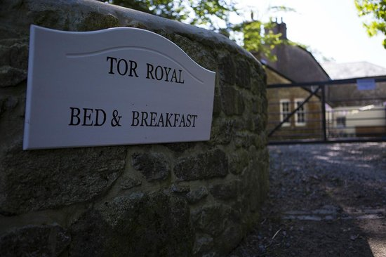 Tor Royal Farm